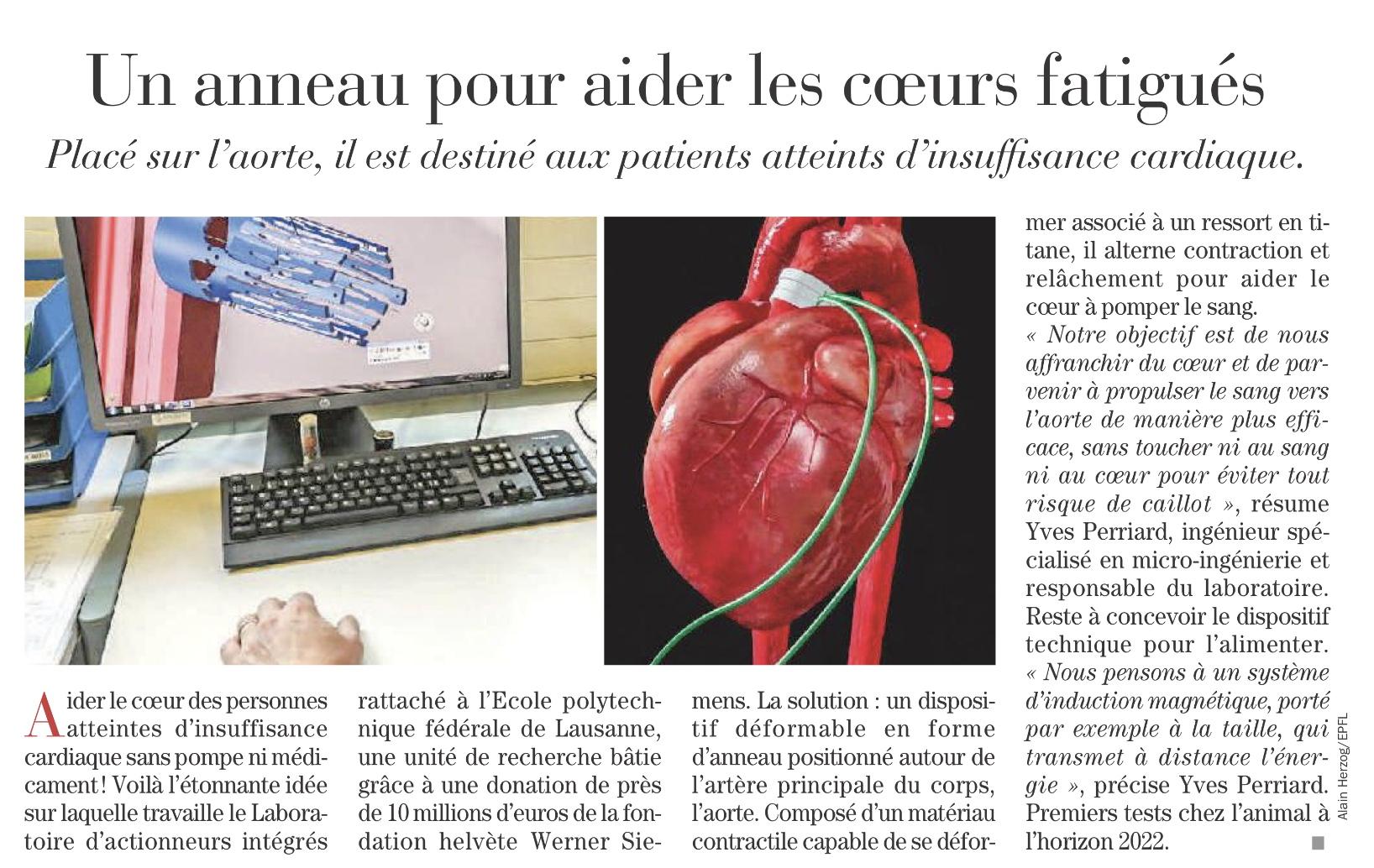 Anneau Cardiaque